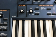 Repair Roland JP-8000 Synthesizer