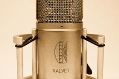 Brauner Valvet Microhone @ Jürgen Driessen Studio