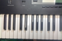 Repair Korg Wavestation Synthesizer Display Reparatur Service