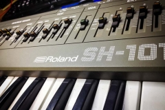 Repair Roland SH-101 Vintage Analog Synthesizer Reparatur Service